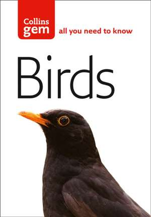Birds de Jim Flegg