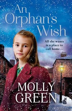 Orphan's Wish de Molly Green