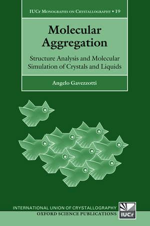 Molecular Aggregation imagine