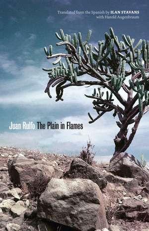 The Plain in Flames de Juan Rulfo