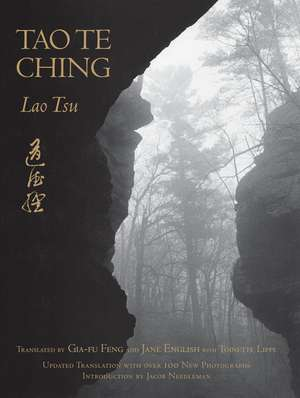 Tao Te Ching:  Seven Variations on a Love Story de Lao Tsu