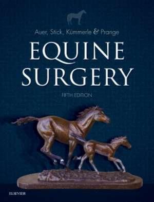 Equine Surgery imagine