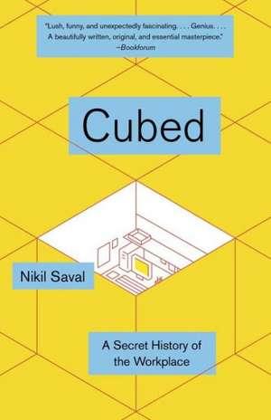 Cubed de Nikil Saval