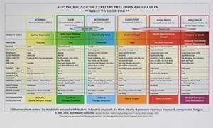 Autonomic Nervous System Table – Laminated Card imagine