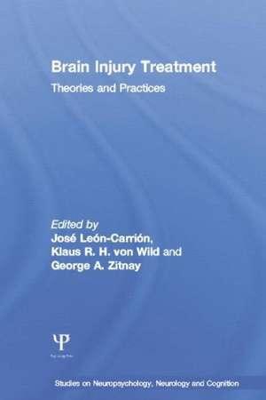 Leon-Carrion, J: Brain Injury Treatment