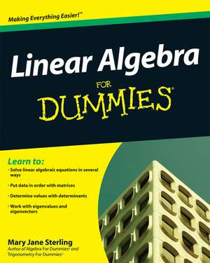 Linear Algebra for Dummies:  Building an Effective Incident Management Plan de Mary Jane Sterling