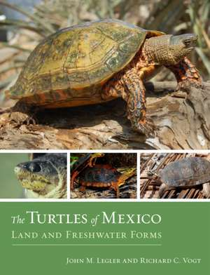 The Turtles of Mexico – Land and Freshwater Forms imagine