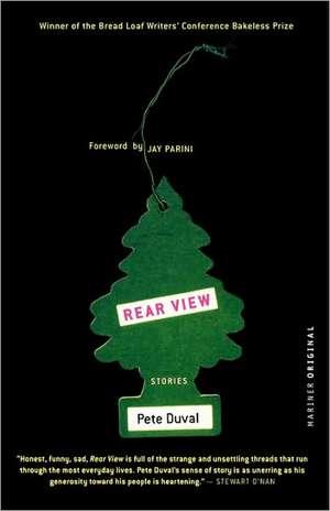 Rear View: Stories de Jay Parini