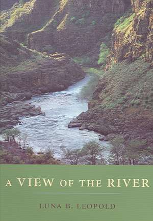 A View of the River imagine