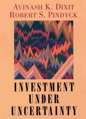 Investment under Uncertainty imagine