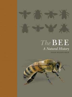 The Bee – A Natural History