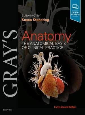Gray's Anatomy imagine