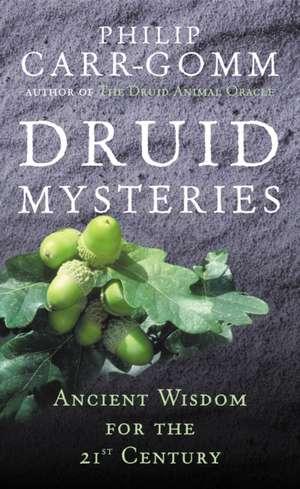 Druid Mysteries imagine