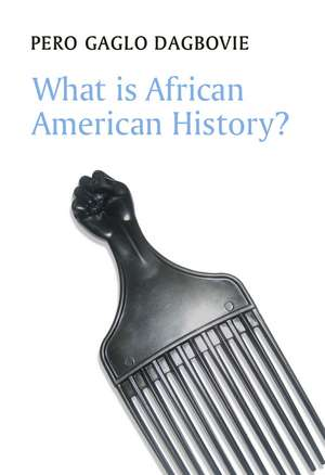 What is African American History?
