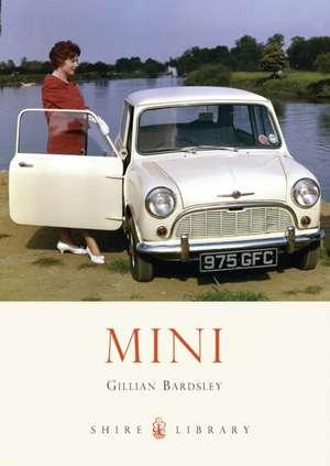 Mini de Gillian Bardsley
