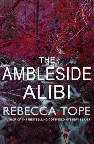 The Ambleside Alibi de Rebecca Tope