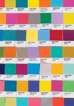 Pantone Chips Journal:  Tips and Tricks for 40 Toy Cameras de Brooke Johnson