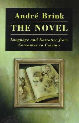 The Novel:  Language and Narrative from Cervantes to Calvino de Andre Brink