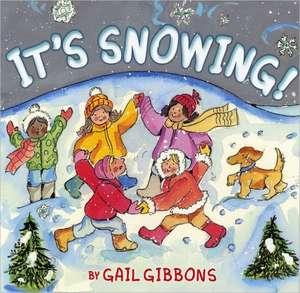 It's Snowing! de Gail Gibbons