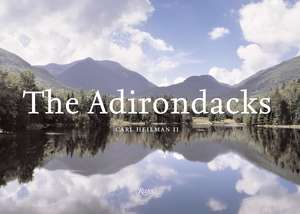 The Adirondacks de Carl Wellman