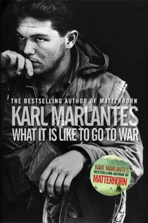What It Is Like To Go To War de Karl (Author) Marlantes