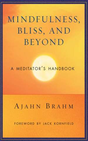 Mindfulness, Bliss, and Beyond imagine