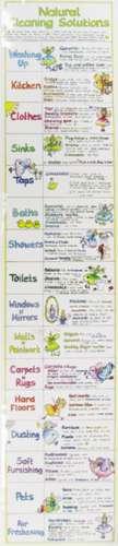 Natural Cleaning Solutions Chart de Liz Cook