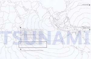 Tsunami: A Document of Devastation de Gary Knight