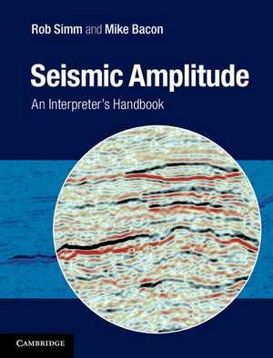 Seismic Amplitude imagine