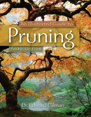 An Illustrated Guide to Pruning imagine