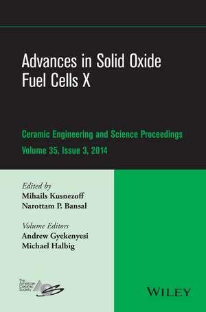 Advances in Solid Oxide Fuel Cells X de Mihails Kusnezoff