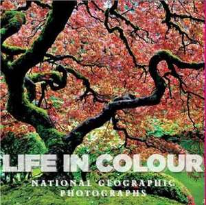 Life in Color: National Geographic Photographs de Annie Griffiths