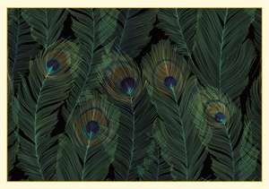 Feathers Boxed Note Cards (14 Cards, 15 Envelopes)