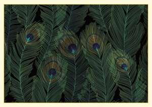 Feathers Boxed Note Cards (14 Cards, 15 Envelopes) de Peter Pauper Press