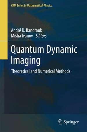 Quantum Dynamic Imaging: Theoretical and Numerical Methods de Andre D Bandrauk
