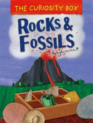 The Rocks and Fossils