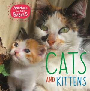 Animals and their Babies: Cats & kittens