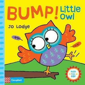 Bump! Little Owl imagine