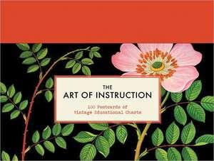 The Art of Instruction de Chronicle Books