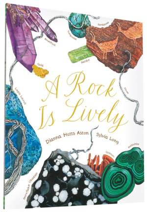 A Rock Is Lively:  A Guide to Pregnancy and Birth for Dads-To-Be de Dianna Hutts Aston