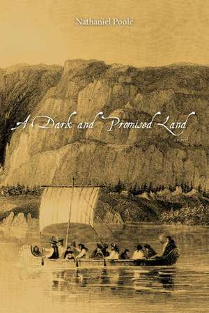A Dark and Promised Land de Nathaniel Poole
