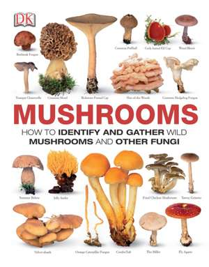 Mushrooms:  How to Identify and Gather Wild Mushrooms and Other Fungi de Thomas Laessoe