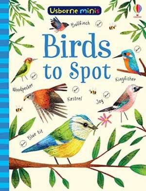 Usborne Minis Birds to Spot imagine