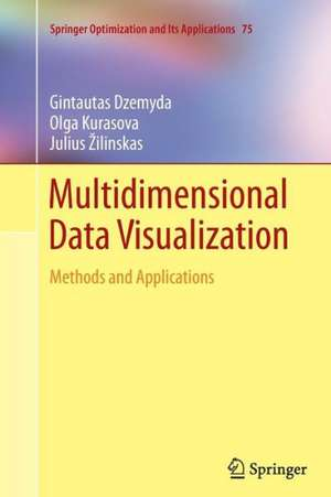 Multidimensional Data Visualization: Methods and Applications de Gintautas Dzemyda