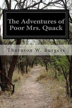 The Adventures of Poor Mrs. Quack imagine