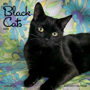 Just Black Cats 2020 Mini Wall Calendar de  Willow Creek Press