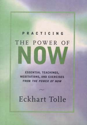 Practicing the Power of Now de Eckhart Tolle