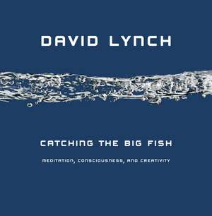 Catching the Big Fish: Meditation, Consciousness and Creativity de David Lynch