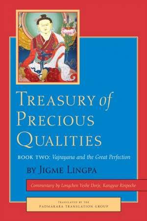 Treasury of Precious Qualities, Book Two:  The Rain of Joy de Jigme Lingpa