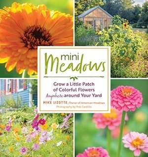 Mini Meadows: Grow a Little Patch of Colourful Flowers de Mike Lizotte